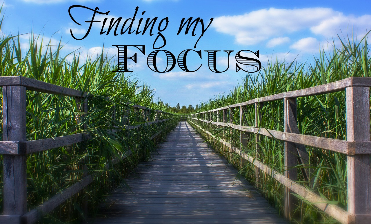 finding-my-focus
